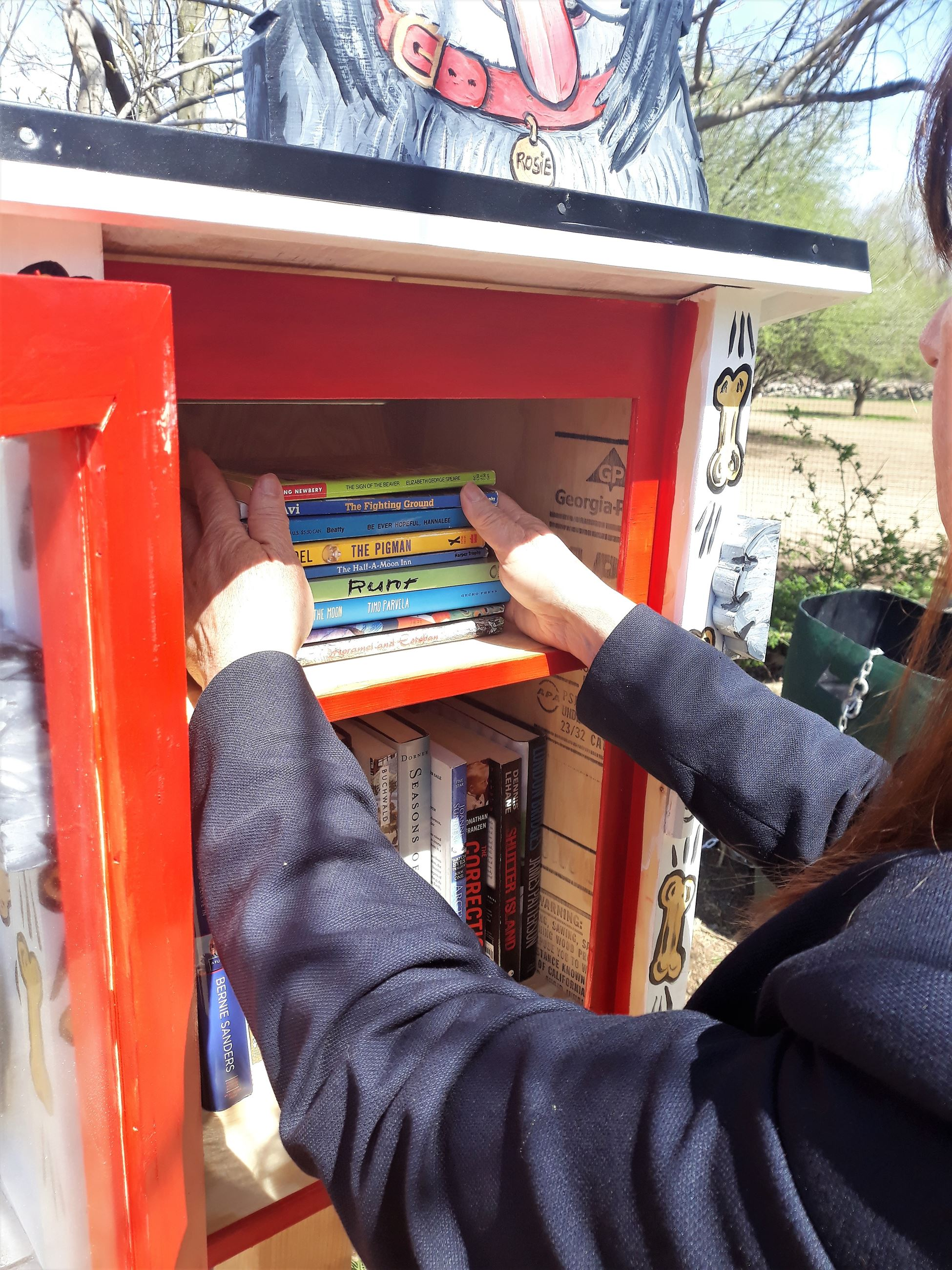 Pop up Libraries