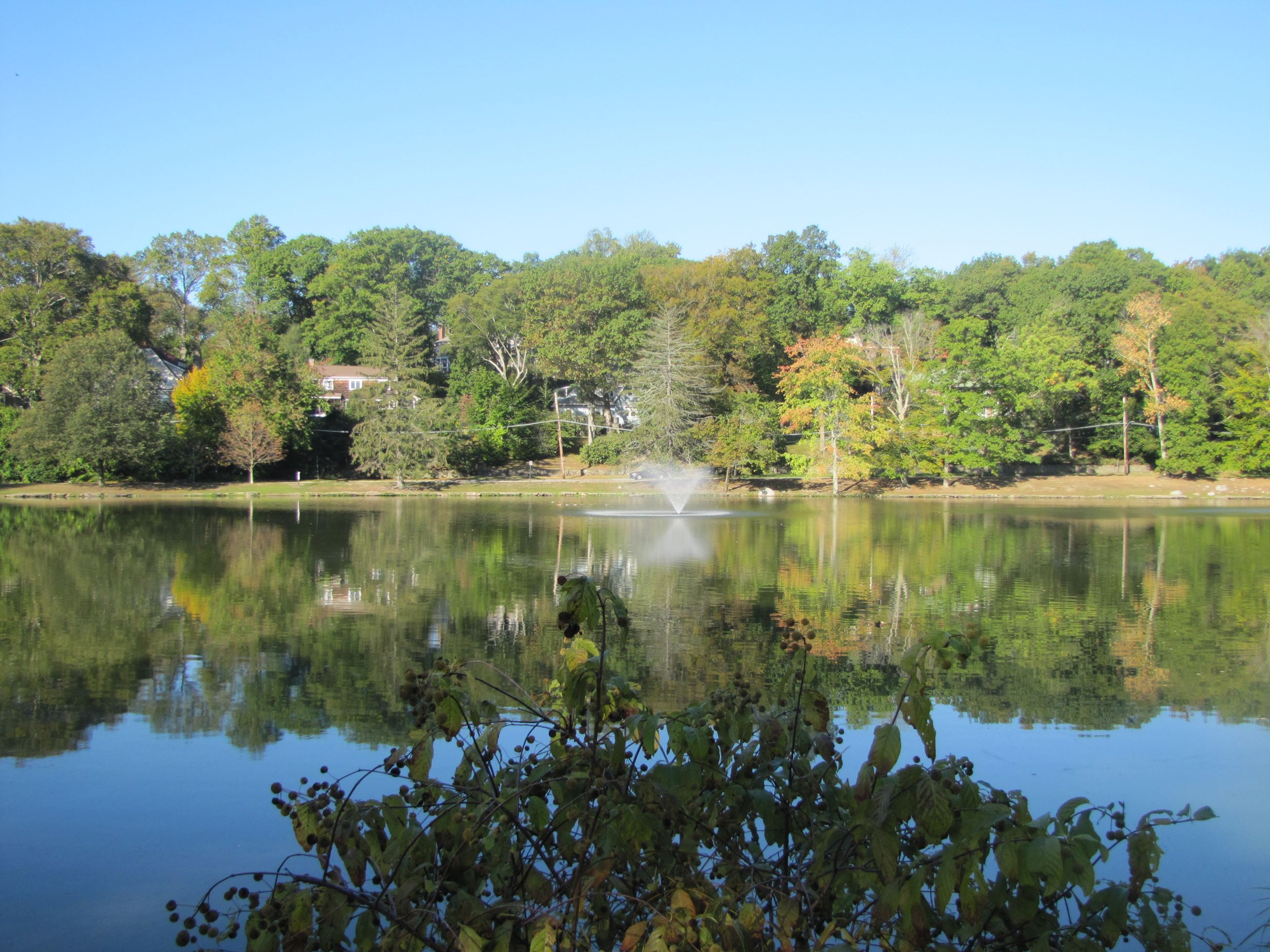 Beechmont Lake